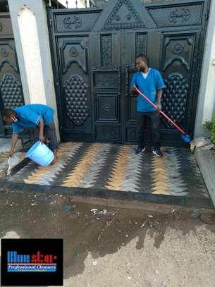 Bluestar Professional Cleaners Ltd image 3
