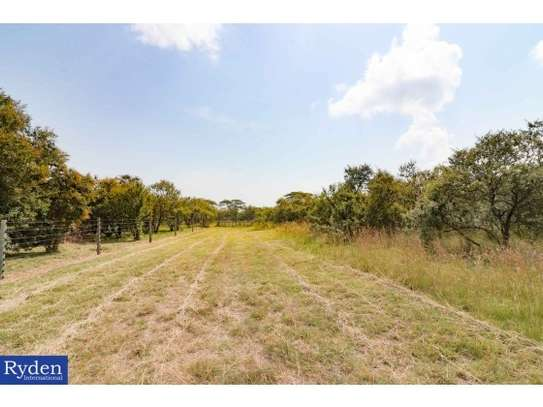 land for sale in Naivasha East image 1
