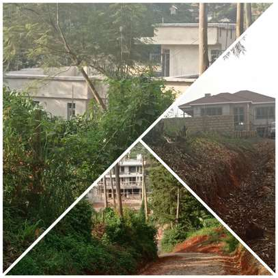 0.1 ha residential land for sale in Kikuyu Town image 1