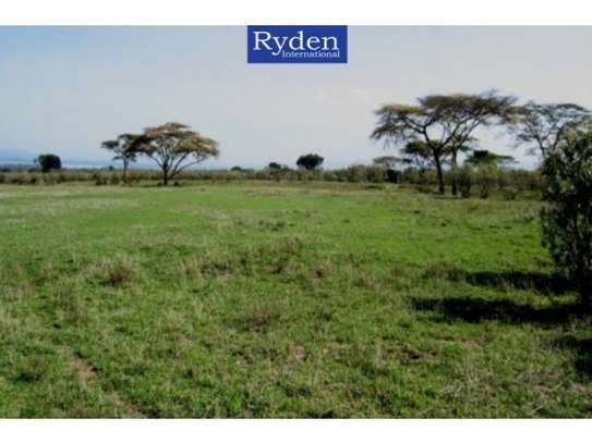 land for sale in Naivasha East image 4