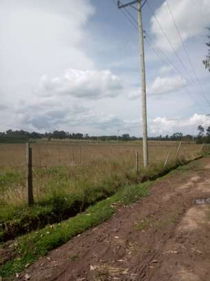 Land for Lease in Kinangop image 3