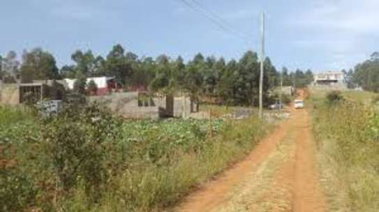 Gikambura Karai 1/4 Acre for Sale With Title image 2