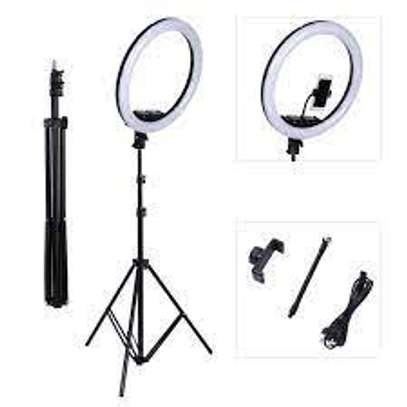 18-inch SMD LED Ring Light Dimmable Lighting Kit with 78.7-inch Light Stand, Filter and Hot Shoe Adapter for Photo Studio LED Lighting Portrait YouTube TikTok Video Shooting (No Carrying Bag) image 1