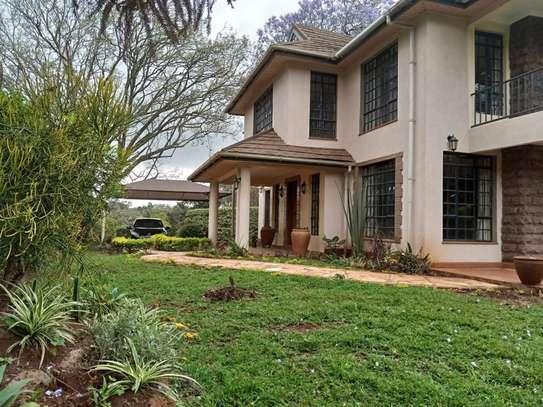 Karen - House image 18