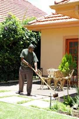 Garden Maintenance Services | Hire Best Gardeners When You Need Them | Contact us today! image 2