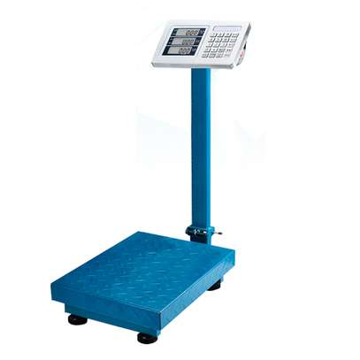 electronic weighing scale 300kg / weighing scale image 1