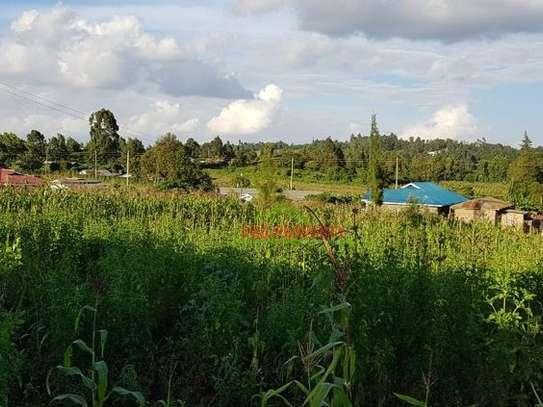 Gikambura - Land image 7