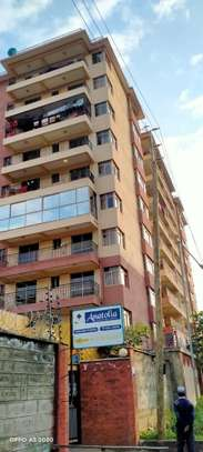 2 bedroom apartment for rent in Kilimani image 15