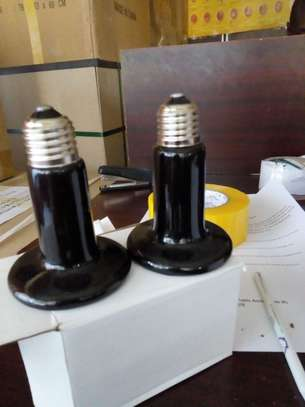 Ceramic brooding bulb and holders