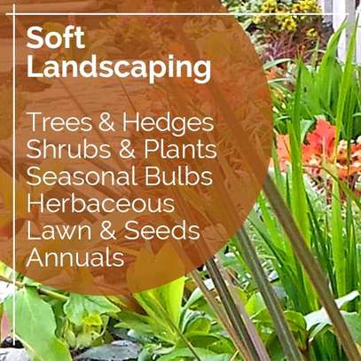 Landscaping & gardening services image 1