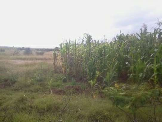 Nanyuki/Rumuruti on sale 50 acres of land