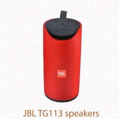 JBL TG113 Bluetooth speaker image 1