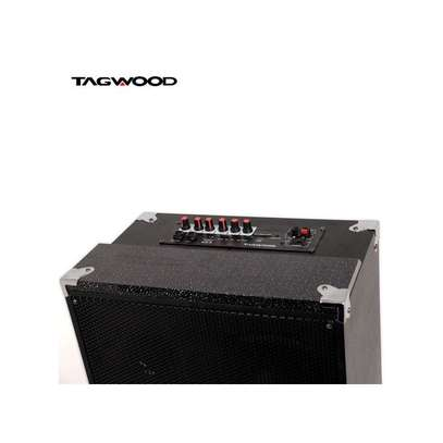TAGWOOD 10A Outdoor Speaker, Bluetooth Microphone, Battery image 3