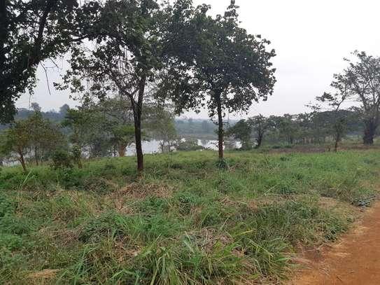 Ruiru - Land image 8
