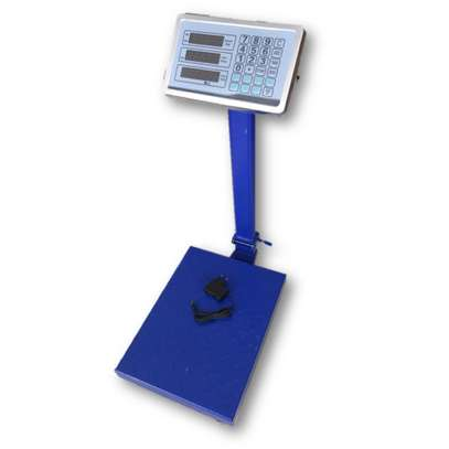 Industrial Scale Type Digital Platform Scale