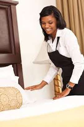 Trained, Professional Domestic Workers. Call Us Today. image 3