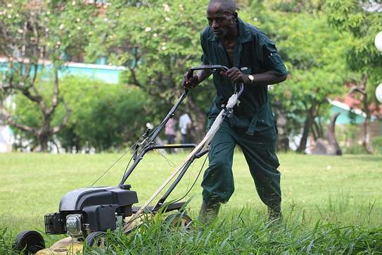 Best Gardening & Lawn Mowing Services|Contact Us Today. image 1