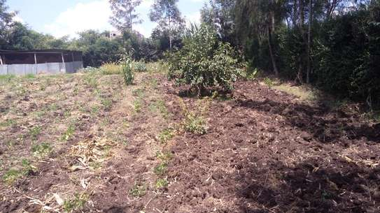 Quarter acre of land for sale in Ongata Rongai.