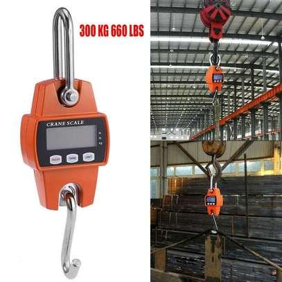 Aluminum Crane Scale 300Kg  Heavy Duty Industrial Hanging Crane Scale image 5