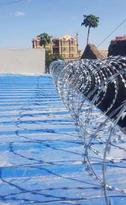 High End Green Double Galvanized Fencing Razor Wire image 1