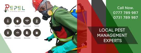 Repel Pest Management & Cleaning Solutions Ltd image 1