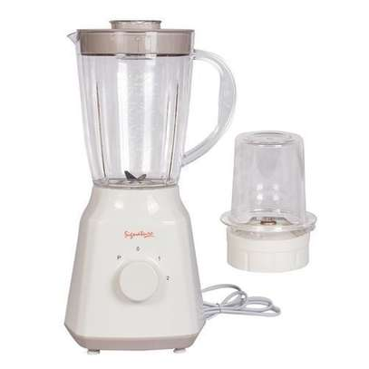 2 in 1 kitchen blender