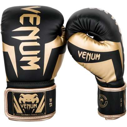 16 OZ boxing Gloves image 2