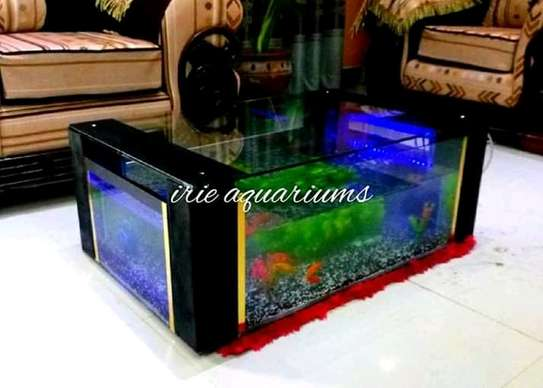 Coffee Table Aquariums. image 6