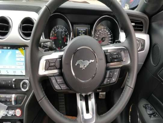 Ford Mustang image 5