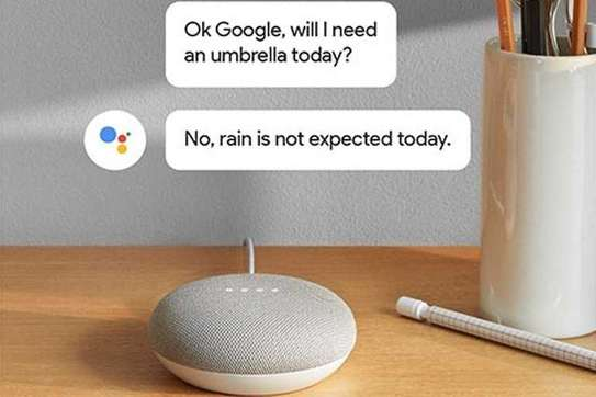 Google Home Mini-[Chalk] WWD image 7