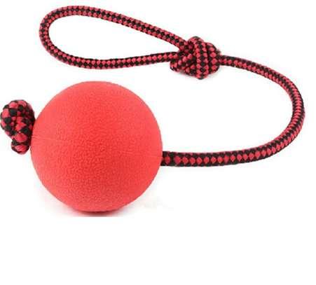 Dog Ball - Small image 1