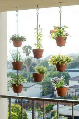 Floating Succulents for your Balcony