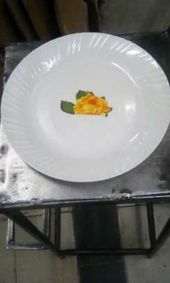 12pc Melamine Plate/Melamine Dinner Plates/Plates image 3