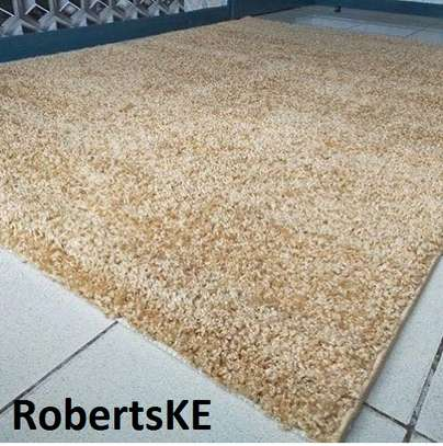 shaggy carpet 7*10 image 1