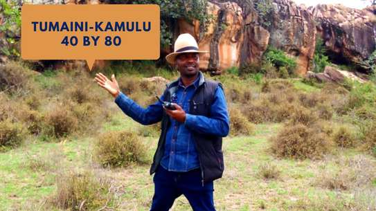 TUMAINI (40 BY 80)KAMULU image 1