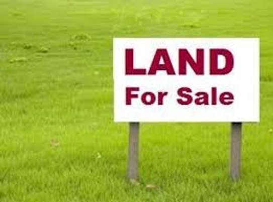 Land for sale image 1