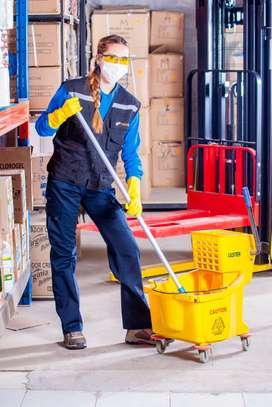 Cleaning Services for Residential Homes/houses, Offices, Carpets, Seats, Sofa set Cleaning image 2