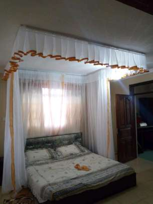 Rail Shears Mosquito Nets image 9