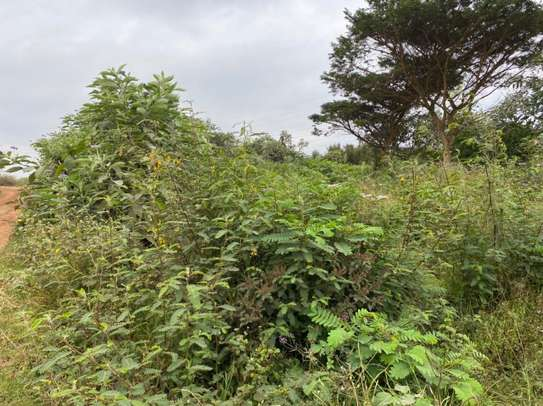land for sale in Red Hill image 13