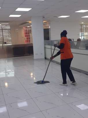 ELLA HOUSE CLEANING SERVICES & PEST CONTROL SERVICES IN NAIROBI KENYA image 15