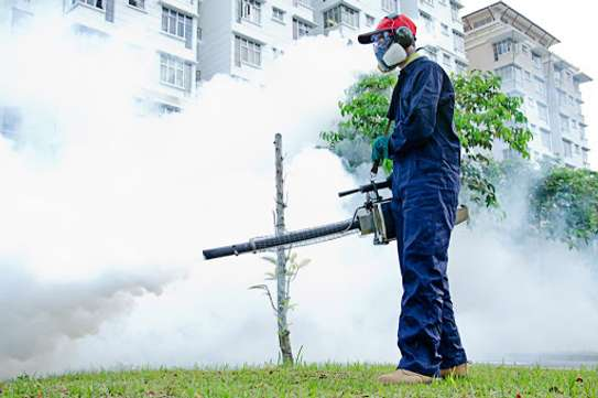 Best Fumigation & Pest Control Services Company Nairobi | Call in our experts today. We Are 24/7 image 2