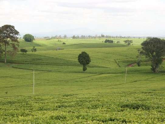 Cianda - Land, Agricultural Land, Residential Land