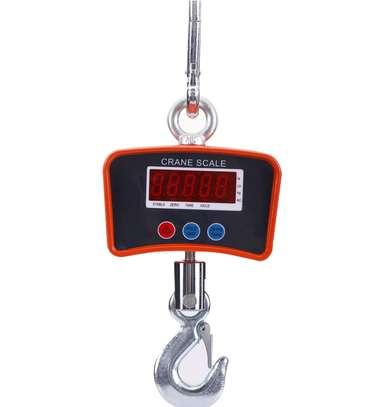 Crane Scale 500KG Digital balance LCD display image 1