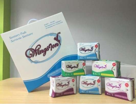 Anion/Wingsion Sanitary Napkins/Pads image 1