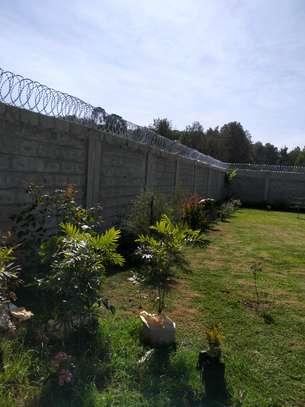 razor wire in kenya image 1