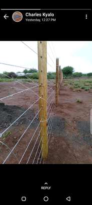 Treated poles and Fencing services