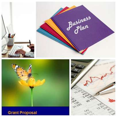 Business  Plans,Grant Proposals,Online Research,editing