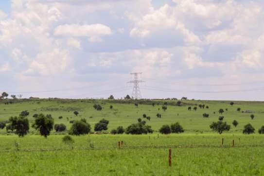 Kapiti Plains Phase 3 image 2