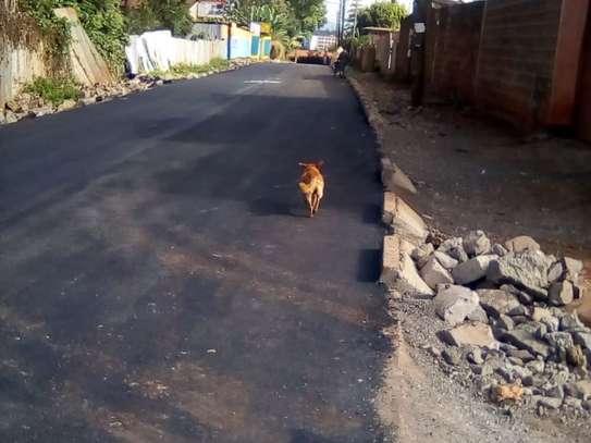 Nyeri Town - Land image 5