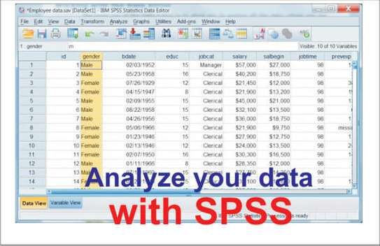 Data Analysis Using SPSS (Academic Projects and Surveys) image 2